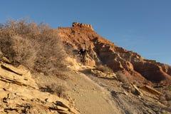 年轻人在鹅莓mesa下骑在Jem足迹下的一个登山车在犹他南部沙漠在一个冬日 库存图片