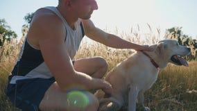 年轻人坐草在草甸和冲程他的拉布拉多 人与他的宠物一起花费时间本质上 友谊 股票录像