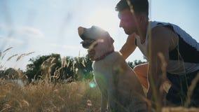 年轻人坐草在草甸和冲程他的拉布拉多 人与他的宠物一起花费时间本质上 爱和 影视素材