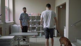 年轻人带领在皮带的一条狗一个兽医诊所 影视素材