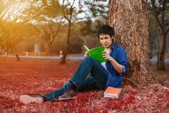 年轻人开会和读书一本书在公园 库存照片