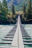 年轻人沿横跨一条山河Katun的一座吊桥走在早期的秋天 库存照片