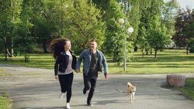 年轻人的慢动作与跑在有享受自由和活动与美丽的小狗的公园的夫妇结婚 影视素材