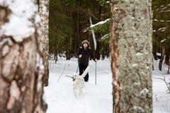 年轻人速度滑雪在有白色狗的森林里 免版税库存图片