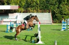 年轻人骑师乘驾美丽的棕色马和跃迁在裤裆在马术运动特写镜头 库存照片