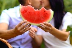 年轻人,恋人亲吻` s的夫妇拿着西瓜和,在向日葵领域的一顿野餐 免版税库存图片