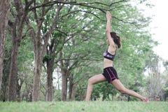 年轻体育妇女stretchin在公园 库存图片