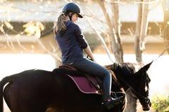 年轻俏丽的女孩-骑一匹马在冬天早晨 库存照片