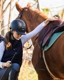 年轻俏丽的女孩-骑一匹马在冬天早晨 免版税库存照片