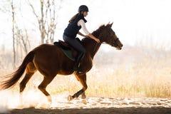 年轻俏丽的女孩-骑一匹马在冬天早晨 免版税图库摄影