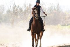 年轻俏丽的女孩-骑一匹马在冬天早晨 免版税库存图片