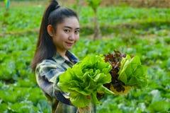 年轻农夫拿着菜绿色橡木 免版税图库摄影