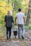年轻加上狗在步行在秋天公园 库存图片