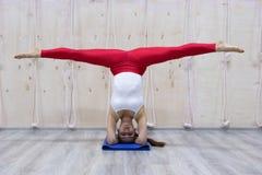 年轻可爱的信奉瑜伽者女子实践的瑜伽概念,站立在Pincha Mayurasana锻炼的变异,手倒立姿势,运作 库存图片
