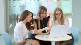 年轻可爱的女孩在业务会议上,看膝上型计算机,谈话 股票视频