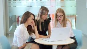 年轻可爱的女孩在业务会议上,看膝上型计算机,谈话 股票录像