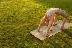 年轻可爱的室外女孩实践的瑜伽 在杉木常设夏天日落结构树二之后 免版税库存图片