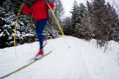 年轻在一个多雪的森林线索的人速度滑雪 免版税库存照片