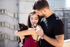 年轻夫妇在手上的拿着猫在大阳台 免版税库存照片