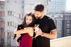 年轻夫妇在手上的拿着猫在大阳台 库存图片
