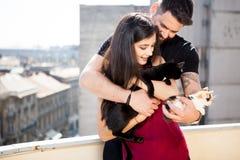 年轻夫妇在手上的拿着猫在大阳台 免版税图库摄影