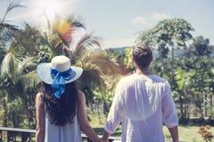 年轻夫妇藏品后面背面图移交美好的热带风景 库存照片