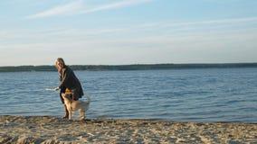 年轻女人奔跑,与一条棕色狗拉布拉多的戏剧在河的河岸的海滩 ?? 股票录像