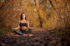 年轻女人实践的瑜伽锻炼在有黄色叶子的秋天公园 体育和休闲生活方式 库存照片