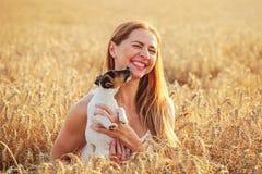 年轻女人拿着杰克罗素在她的手上的狗小狗,笑,狗舔她的面颊和下巴,日落被点燃的麦田  免版税库存图片