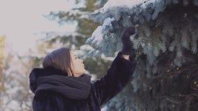 年轻女人接触冷杉分支 可爱的年轻女人黑毛皮大衣的和有在步行接触分支的围巾的  影视素材