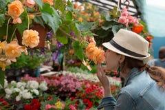 年轻女人购物在户外新都市花市场上,买和采摘从大品种五颜六色花卉 库存照片