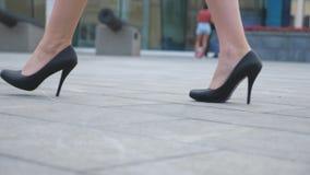 年轻女实业家的脚鞋类的在高跟进来在都市街道 在黑鞋子的亭亭玉立的女性腿在上流 股票录像