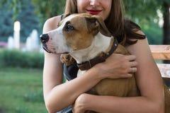 年轻女性坐长凳并且拥抱她可爱的斯塔福德郡狗狗在一个温暖的夏日 免版税库存图片