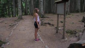 年轻女性游人在黑松森林4K里读信息立场 股票录像