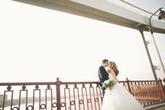 年轻婚礼夫妇,有新郎画象的在桥梁,室外夏天的自然美丽的新娘 免版税库存图片