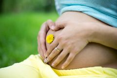 年轻孕妇的美丽的腹部反对绿色春天背景的 免版税库存图片