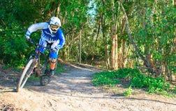 年轻山骑自行车的人骑马通过灌木土地 库存照片