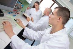 年轻工作在实验室的人医疗研究员 库存照片