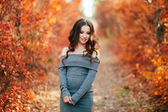 年轻性感的妇女在秋天森林里 免版税库存照片