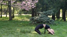 年轻性感的舞蹈家妇女跳舞在公园 股票录像