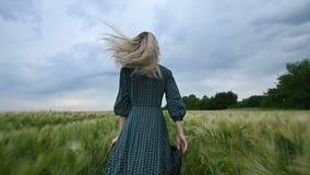 年轻愉快的白肤金发的女孩在一块绿色麦田跑在晚上以雨天空为背景 从的看法 影视素材