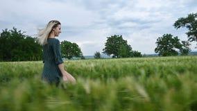 年轻愉快的白肤金发的女孩在一块绿色麦田跑在晚上以雨天空为背景 o 股票录像