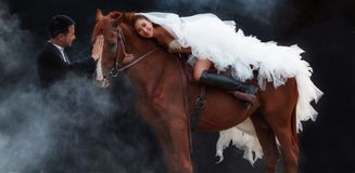 年轻新婚佳偶夫妇,时尚白色新娘婚礼服装骑马的美丽的秀丽新娘在强肌肉马待命 库存图片