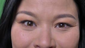 年轻有吸引力的亚洲女性面孔特写镜头射击与看直接照相机的眼睛的有被隔绝的背景  股票录像