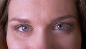 年轻有吸引力的女性面孔特写镜头射击与看与微笑的表示的眼睛的照相机 股票录像