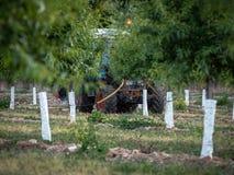 年轻桃子果树园在春天有完成农业劳动的拖拉机的 图库摄影
