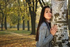年轻沉思妇女在桦树倾斜了在秋天公园 库存图片