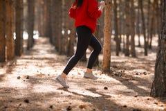年轻深色的运动员在秋天森林里跑 免版税库存图片