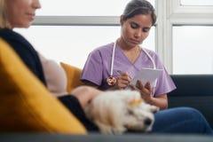 年轻狩医谈话与狗所有者在家庭参观期间 库存照片