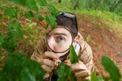 年轻生态学家的图片有放大镜的 免版税库存照片